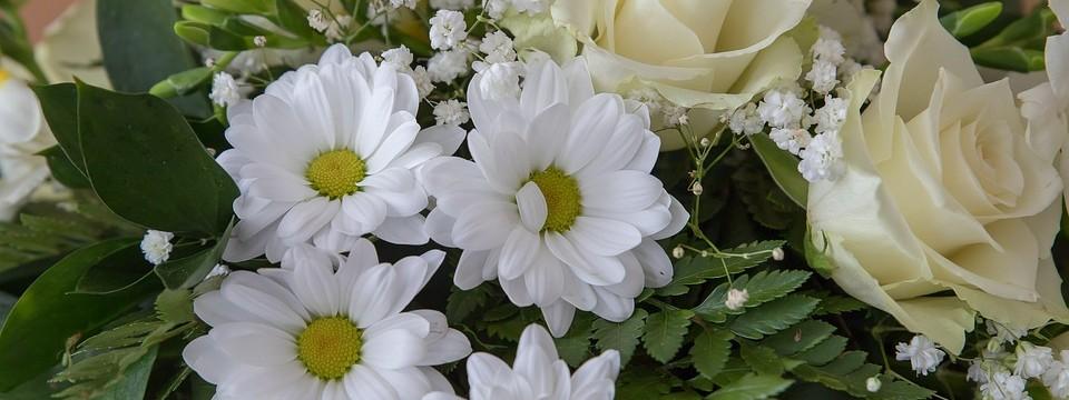 flowers-3990696_960_720